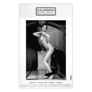 Fotokalender Groot Pin-up Art & Seduction